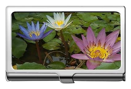 Yanteng Plant Flower Lotus Flower Nombre de la empresa ...