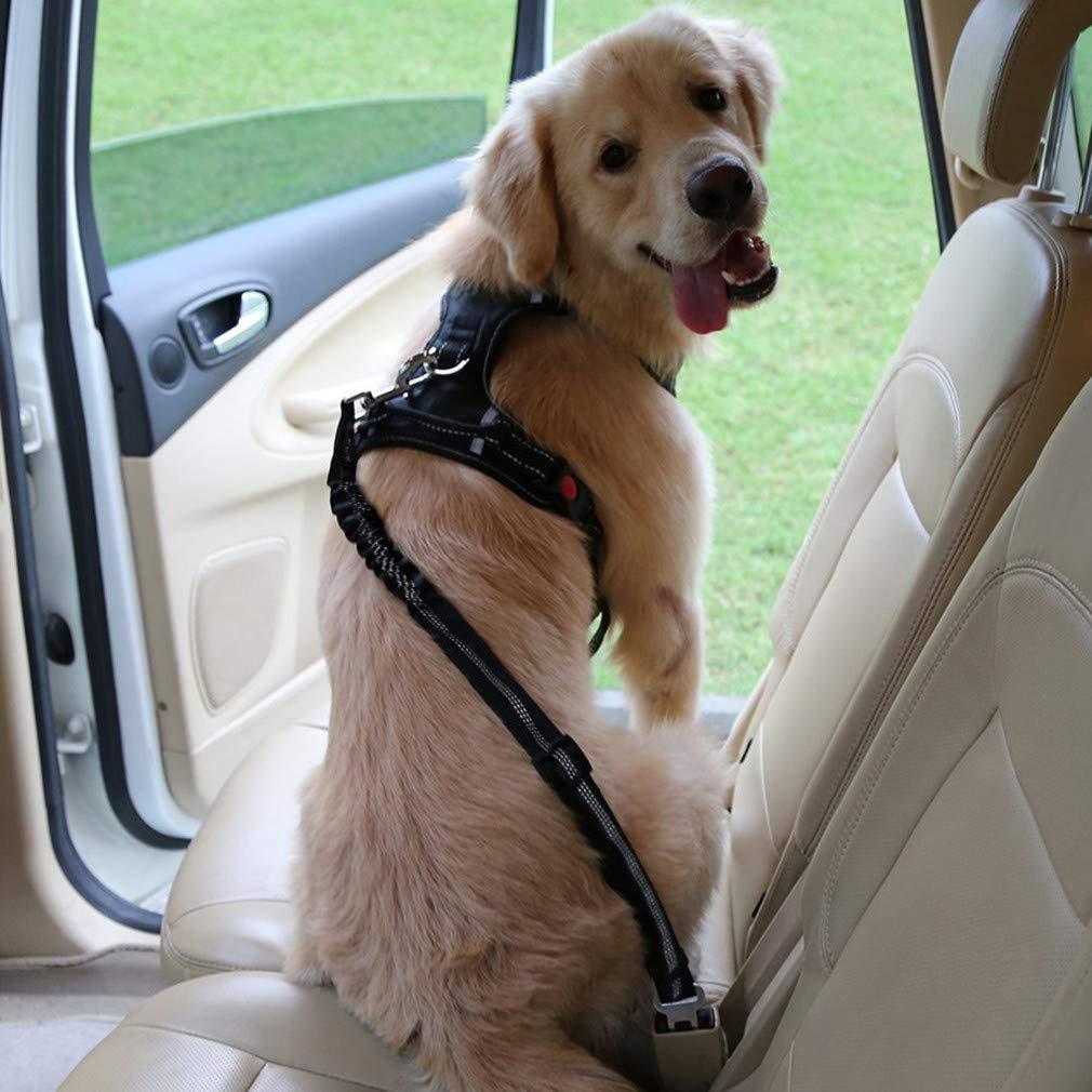 Black Dog Seat Belt Lead Restraint Harness by BByu
