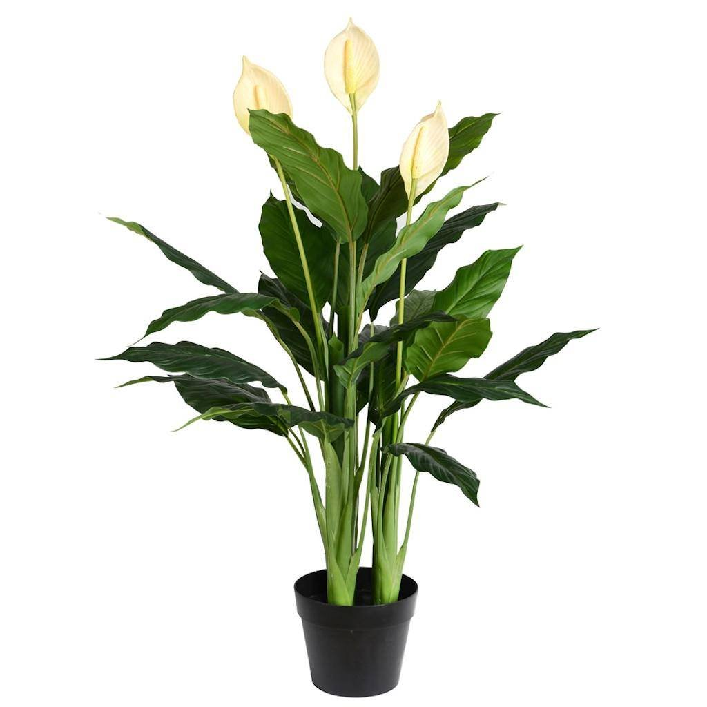 Vickerman TA181501 Green Lily Everyday Bush
