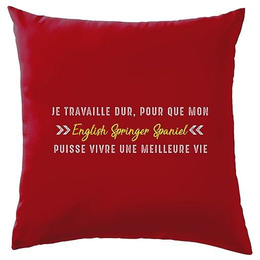 Je trabajando duro para que mi English Springer Spaniel ...