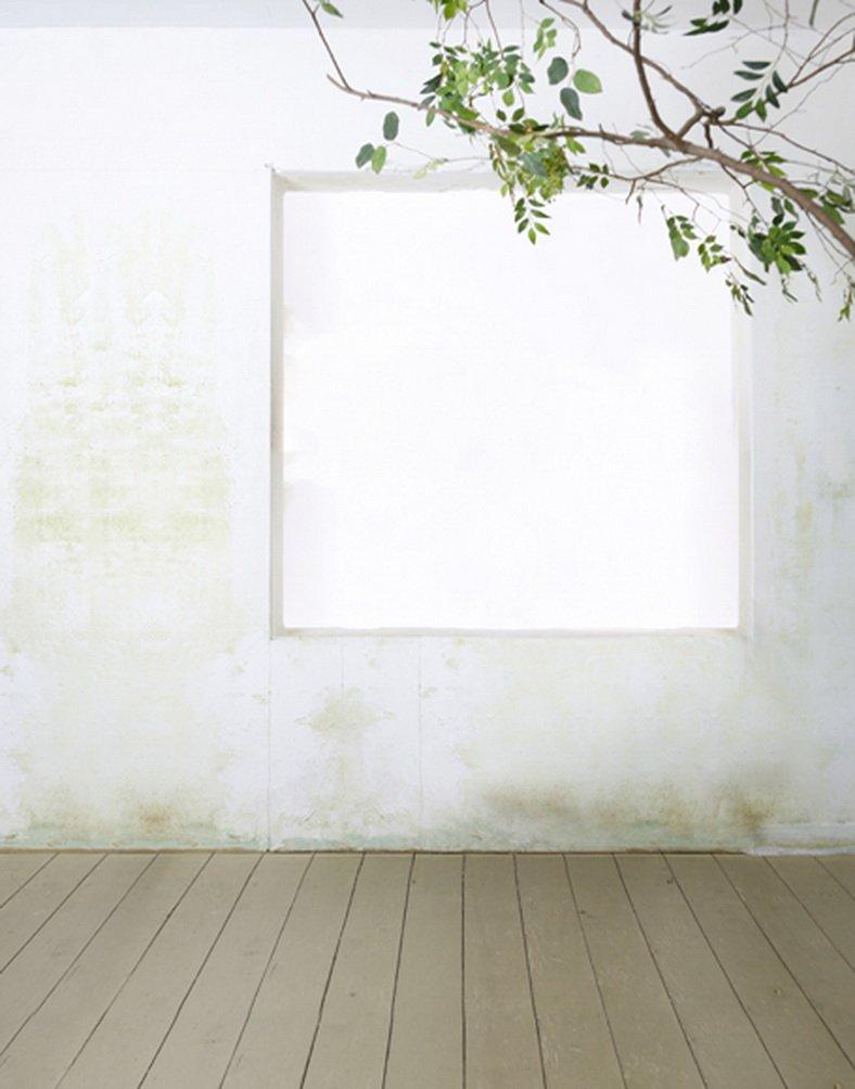 5 x 7ft木製床ホワイト壁Green Leaves写真背景computer-printedビニールBackdrops   B01JO3N59G