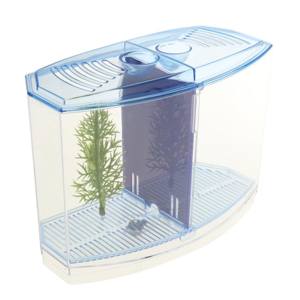 aquarium büro raumteiler nonbrand magideal mini aquarium mit trennbrett und kleine gräser für haus büro schreibtisch dekoration büro
