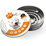 WOOF WOOF 100% Quality (100% Safe and effective) Flea & Tick Collars Prevention for Dogs - Allergy Free - Prevents And Removes Fleas, Ticks, Lice And Mosquitoes, sarcoptic mange quickly- 8 Months Protection - 51 cm Length (SMALL DOG)