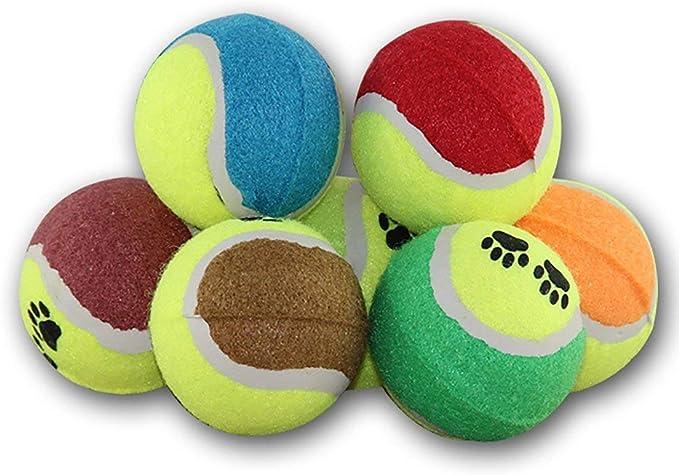 Pelotas de Tenis para Perros y Pelotas de Goma formación para ...