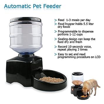 B-Redder 5.5L rojo Alimentador automático del animal doméstico con Reminding de voz y