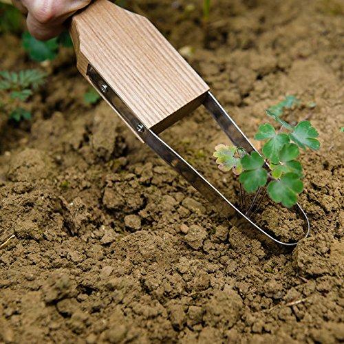 Kent & Stowe Hand Loop Gardening Weeder Stainless Steel with Ash Wood Handle by Kent & Stowe (Image #2)