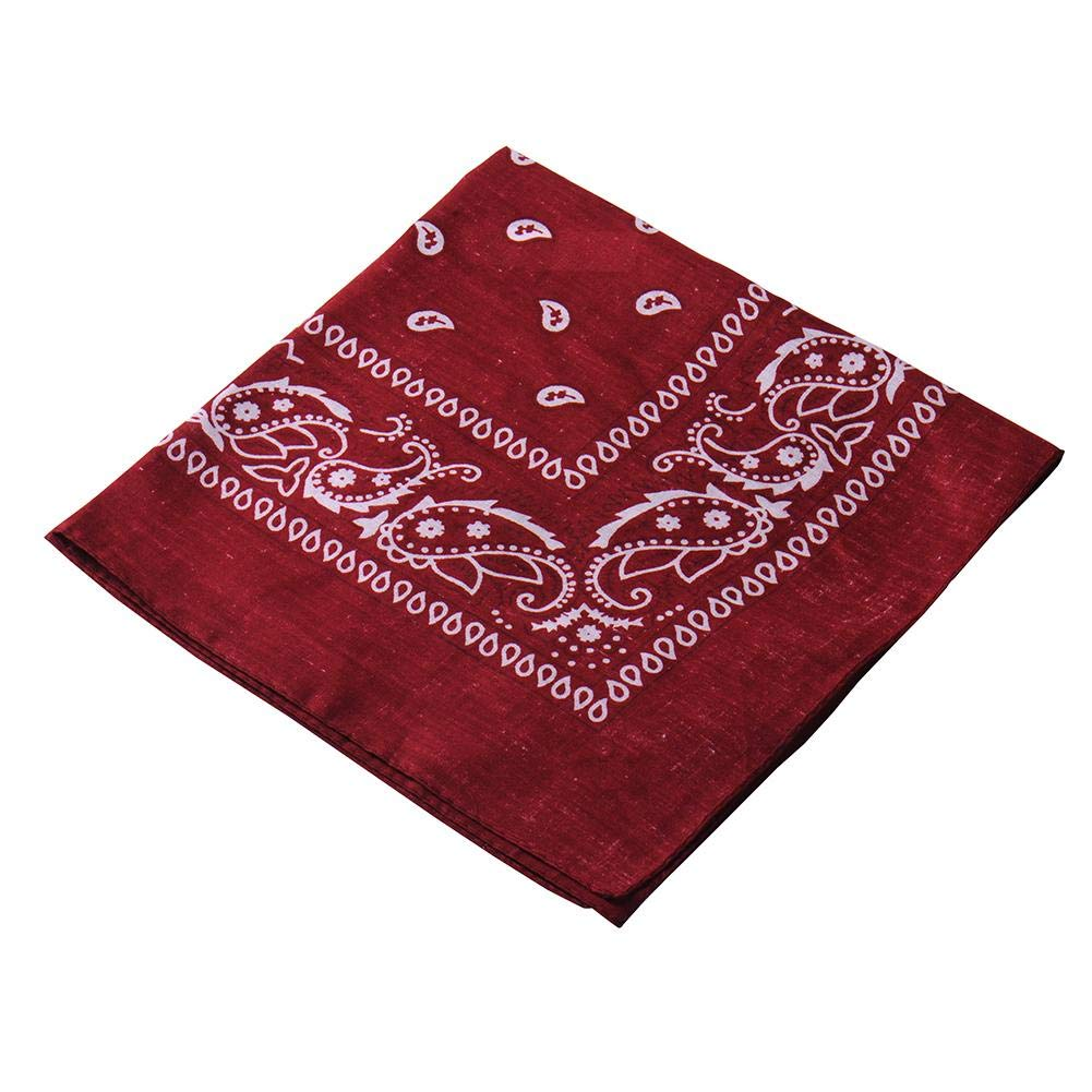 paisley bandana Paisley Print Scarf bandana headband bandanas bibs for men women Pack Bandana red blue pink buff tan bandana Fashion Hair Accessory with square Paisley pattern
