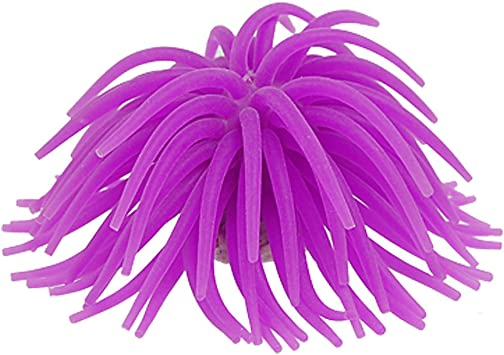 Jardin Aquarium Dekoration Seeanemone Silikon Violett Amazon De