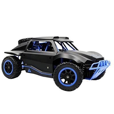 Rabing Remote Control Car F11 High Speed 1/12 Scale RC Car 2.4GHz 2WD Remote Control Trucks Off-Road 40+KM/H Radio Controlled Electric Vehicle-Red (Blue)