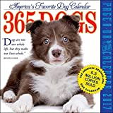 365 Dogs 2017 Color Page-A-Day Calendar