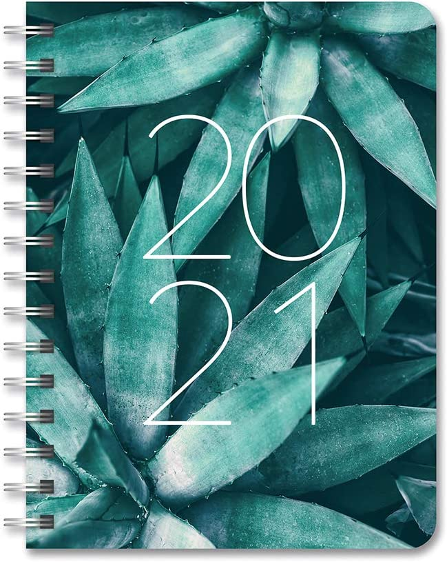 Orange Circle 2021 Compact Flexi Planner Agave December 2021 August 2020