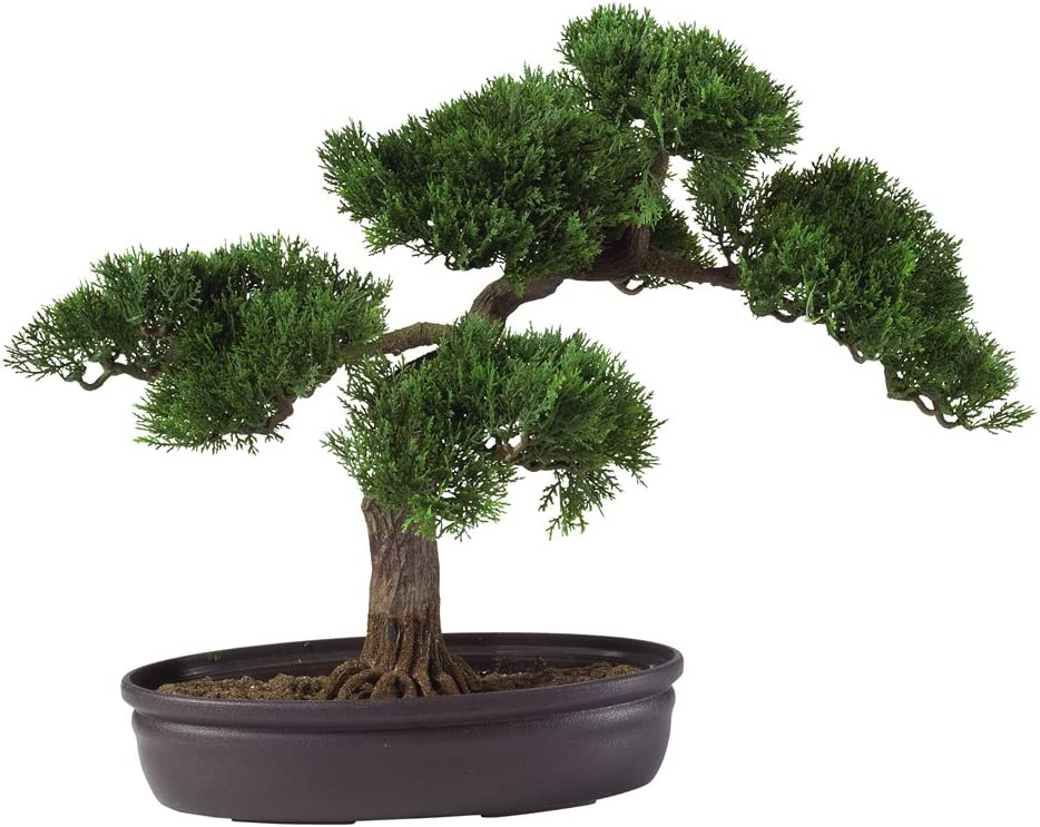 Amazon Com Nearly Natural 4106 16in Cedar Bonsai Silk Plant Green Home Kitchen