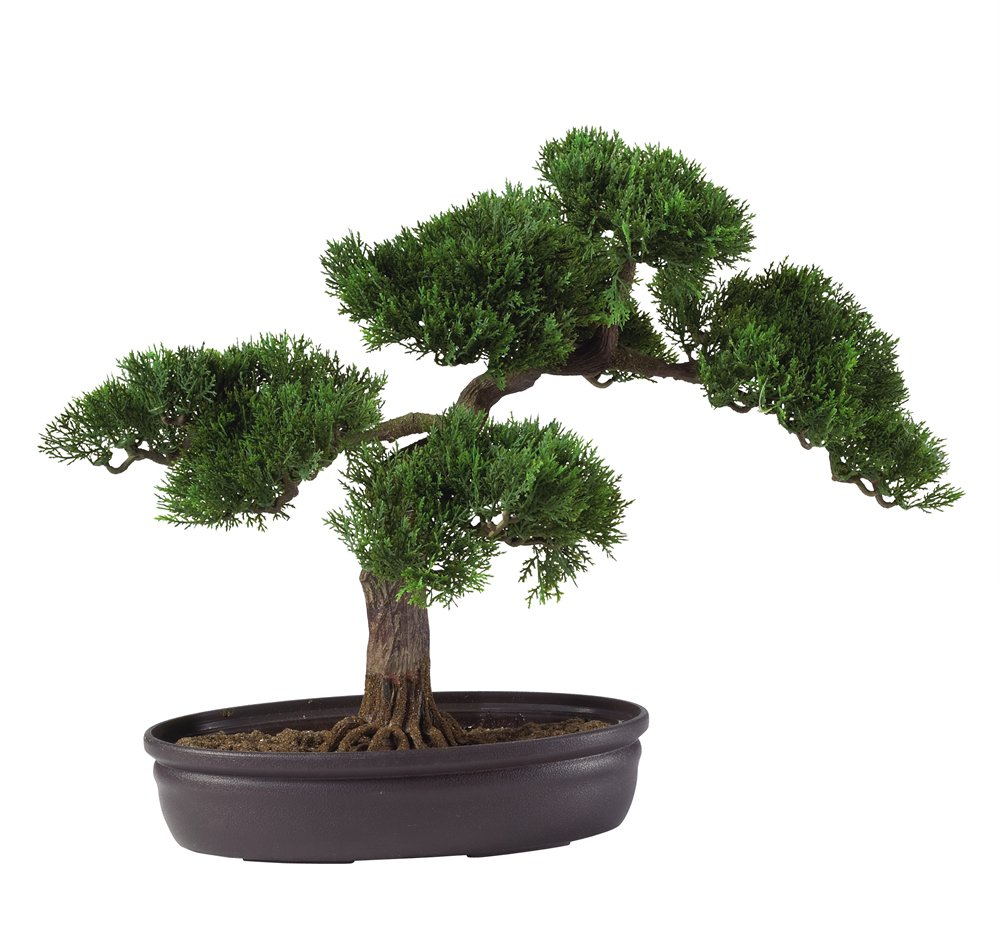 Nearly Natural 4106 Cedar Bonsai Decorative Silk Plant, 16-Inch, Green