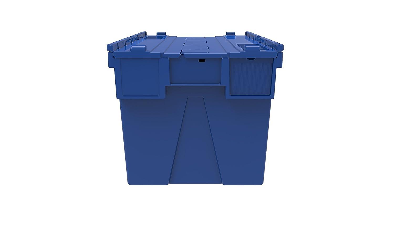 10 x en color caja de plástico incluidas 65 litros - rojo, azul o verde caja de plástico envase fealdad intarsia con xolair adjunto - diseño de tapa con ...