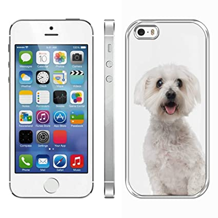 Amazon.com: Carcasa trasera para iPhone SE/5, iPhone 5S ...