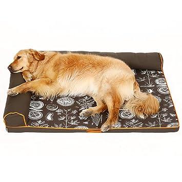Cama perro Indestructible para Perros medianos/Gatos / Mascotas, Camas perreras perreras Lindas y duraderas para Perros pequeños/Perritos, Negro (Tamaño ...