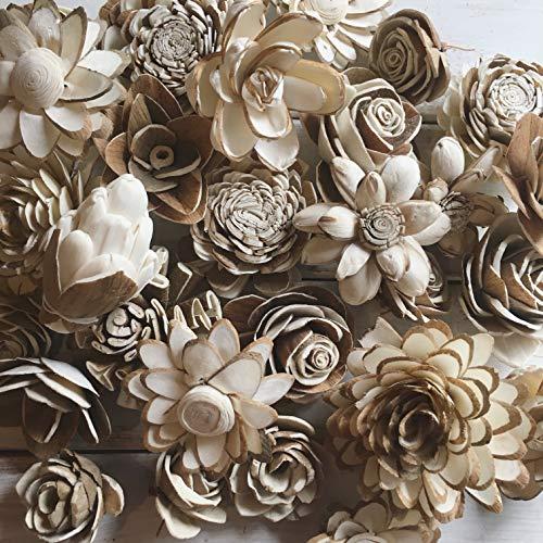 Oh You're Lovely Sola Wood Flower Bark Assortment ()