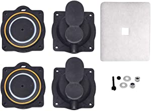 Paopro Air Pump Rebuild Complete Kit for Hiblow HP 80,H60