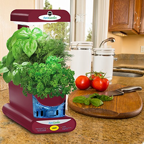 AeroGarden Sprout with Gourmet Herb Seed Pod Kit, Red