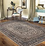 """Traditional Oriental Gray Medallion Design 7'10"""" X 10′ 2″ Area Rug Review"""