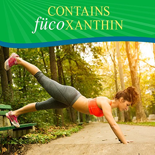 Garden of Life Fucoxanthin Supplements – FucoThin Green Diet Pill for Weight Loss with Green Coffee Bean Extract, 90…