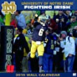 Turner Perfect Timing 2015 Notre Dame Fighting Irish Team Wall Calendar, 12 x 12 Inches (8011599)