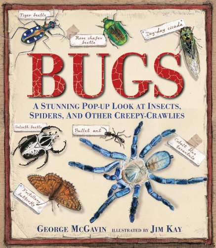 Bugs: A Stunning Pop-up Look at Insects, Spiders,