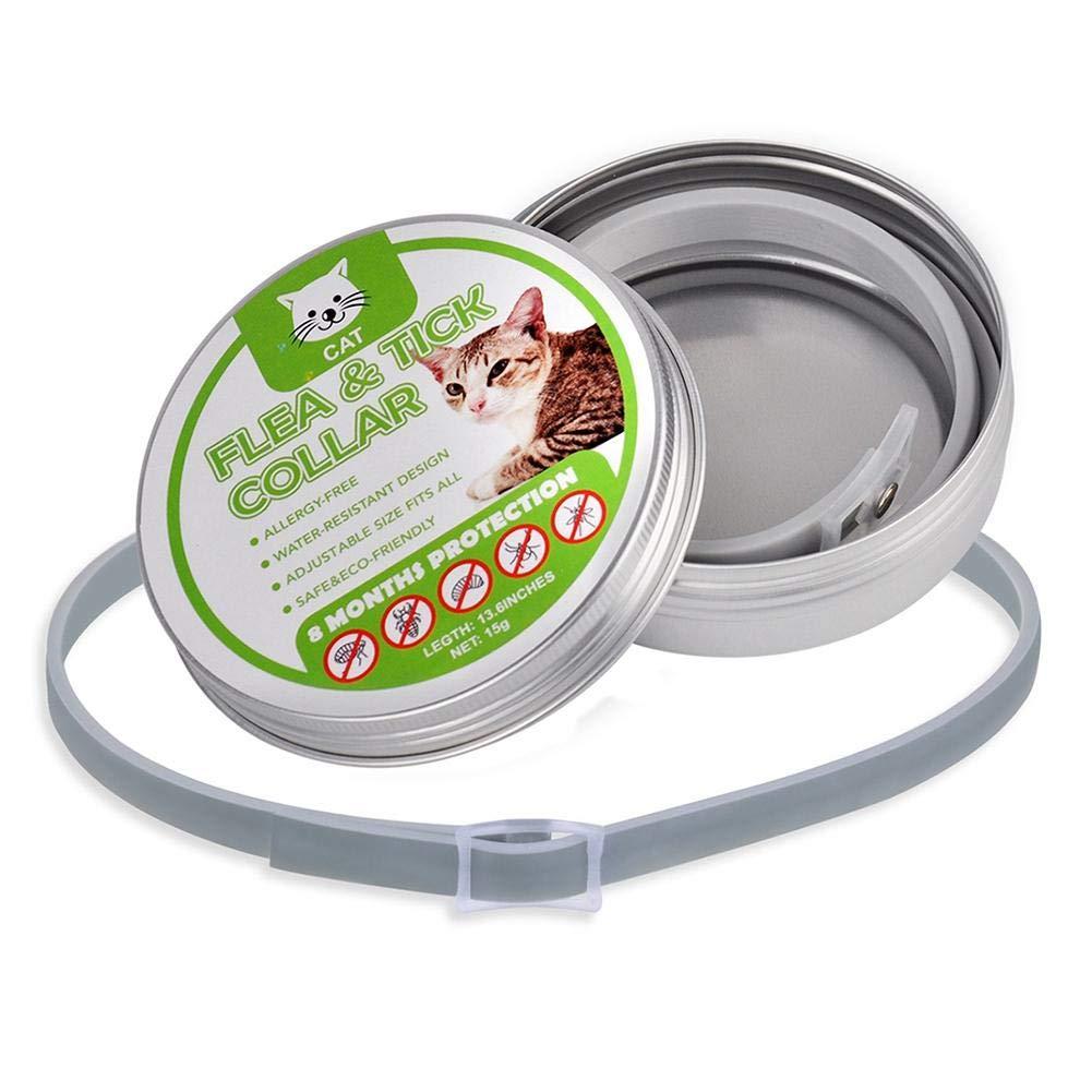Gatto Antipulci Collare Pulci e Zecche Collare 8 Mesi di Efficacia Protezione Pettorale in Gomma Repellente per Tutti i Tipi di Gatti tidystore Collare Antipulci per Gatti Impermeabile