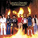 Street Survivors [LP]