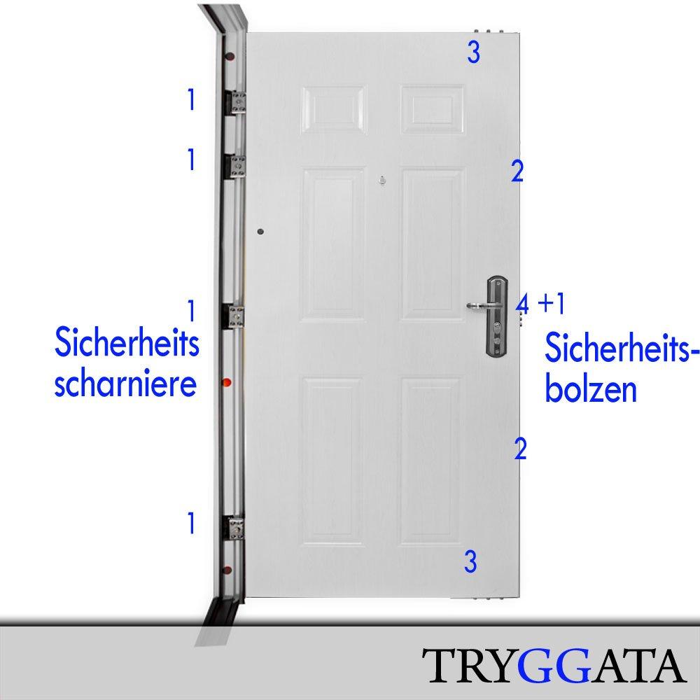 Wohnungstür sicherheitstür  Sicherheitstür HAUSTÜR Wohnungstür Stahltür Wohnungstür linker ...