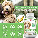 Milk Thistle Liver and Kidney Support for Dogs, Detox, with DHA, EPA, Hepatic Support, Dandelion Root, Omega 3 Fish Oil, Vitamin B1,B2,B6,B12, Kidney Stone Prevention, Bladder Support (120 Chews)