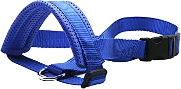 Gaity Pet Nylon Dog Muzzle, Adjustable Loop with Soft Padding, Prevent Biting, Chewing and Barking, Suitable for Medium and Large Dogs - Blue