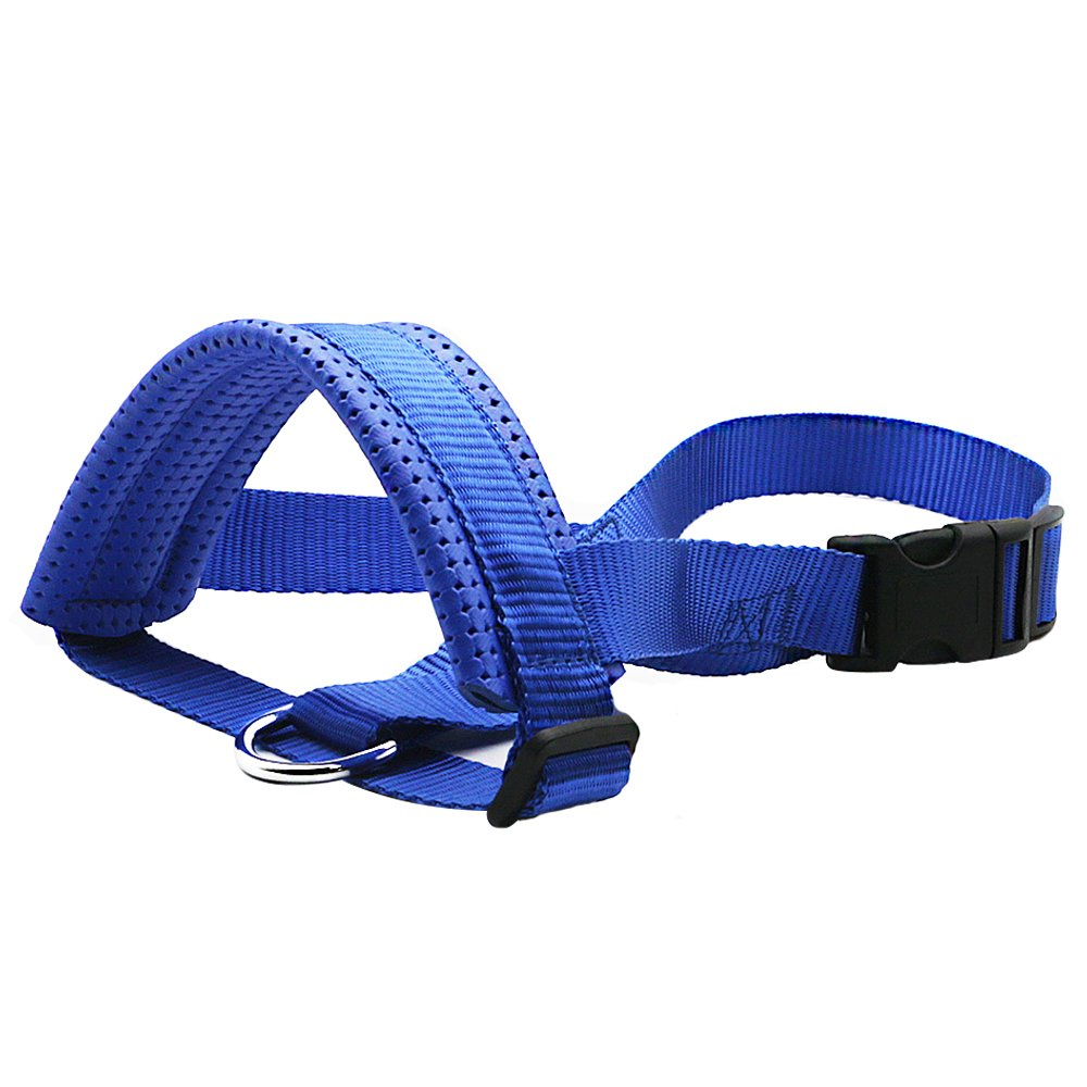 Gaity Pet Nylon Dog Muzzle, Adjustable Loop with Soft Padding, Prevent Biting, Chewing and Barking, Suitable for Medium and Large Dogs - Blue (L Snout 7-12 IN)