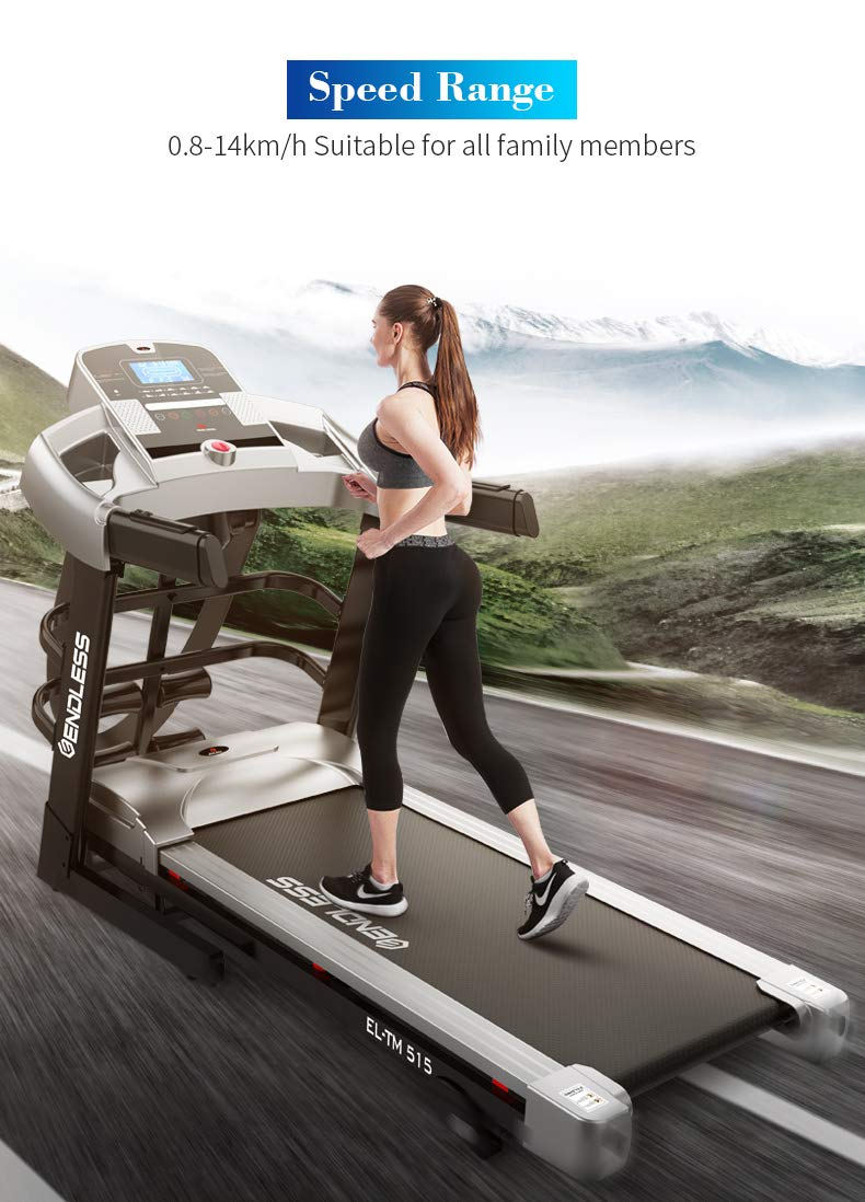 Endless TM-515 Blend (2.5 HP) Motorized Treadmill (With