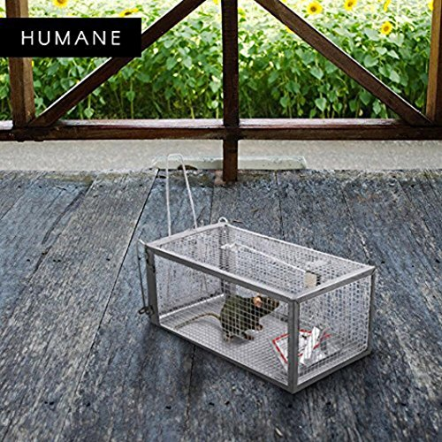 Door Animal Trap 2 (Animal Trap Cage,AutumnFall Clearance!!❤️❤️1PC Stainless Steel Rodent Animal Mouse Humane Live Trap Hamster Cage Mice Rat Control Catch Bait Durable 2018 Hot Sale (Silver))
