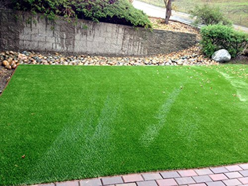Review New 15′ Foot Roll Artificial Grass Turf Synthetic Fescue Pet SALE! Many Sizes! (88 oz 12′ x 40′ = 480 Sq feet)