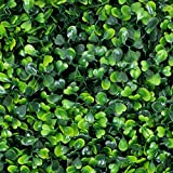 Porpora Artificial Hedge Plant, Greenery Panels Suitable for Both Outdoor or Indoor use, Garden, Backyard and/or Home Decorations, Boxwood 20 x 20 Inch (12 pack) by e-Joy