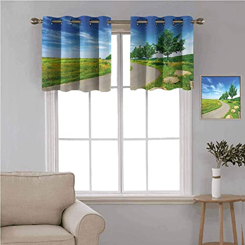 Country Decor 2 pcs 52×36 Blackout Drapes,Road Desolate Green Field Trees Clear Blue Sky Rural Outdoors Landscape Decorative Grommet Top Window Treatment Blackout Panel Curtain for Small Window,Green