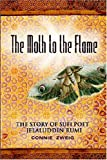 img - for The Moth to the Flame book / textbook / text book