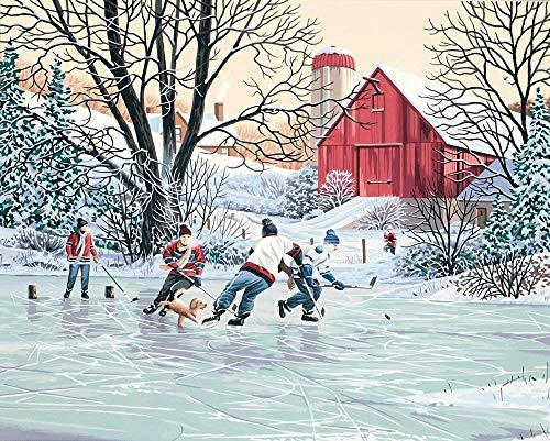 5D DIY Diamond Painting Kits Square Full Drill Ice Hockey Farm Rhinestone Embroidery Cross Stitch Arts Craft for Home Wall Decor 16x20 inches