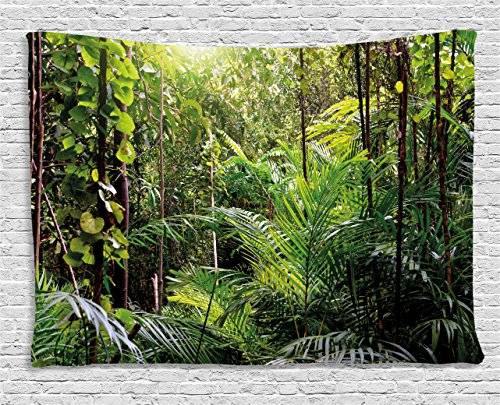 (Ambesonne Green Decor Tapestry by, Krabi Thailand Forest Jungle Wild Life Nature Palms Leaves Trees Artwork, Wall Hanging for Bedroom Living Room Dorm, 80WX60L Inches, Forest)