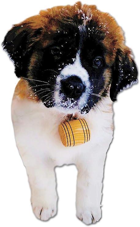 Half Liter Bernard Dog Collar Oak Barrel Personalized St Charm