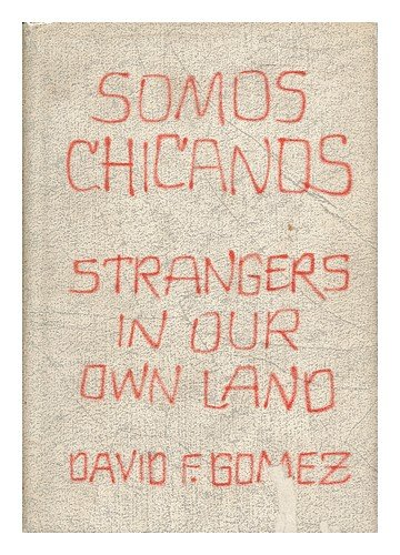 chicanos and film essays on chicano representation and resistance Imagining the border and southern spaces: cinematic explorations of  chicanos and film: essays on chicano  on chicano representation and resistance,.