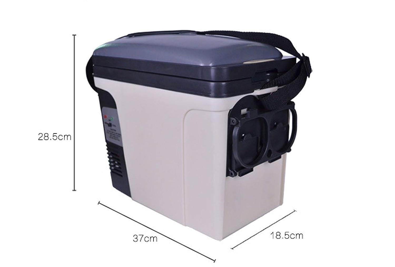 Auto Mini Kühlschrank 12v : L auto kühlschrank v dc netzteil kalt und amazon elektronik