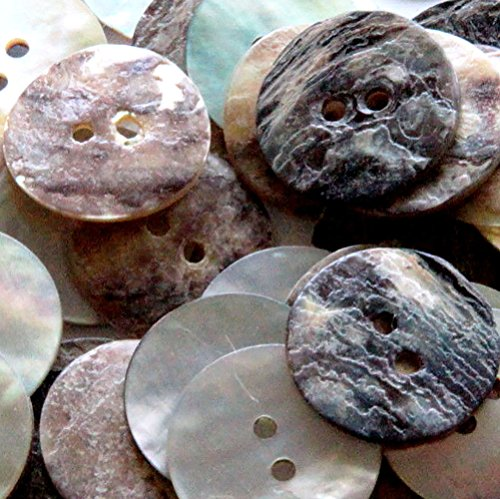 Abalone Button - 3