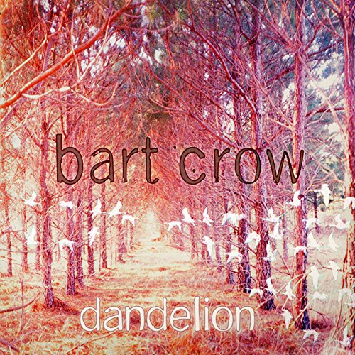 Didnt Mean To Break Your Heart By Bart Crow Band On Amazon Music