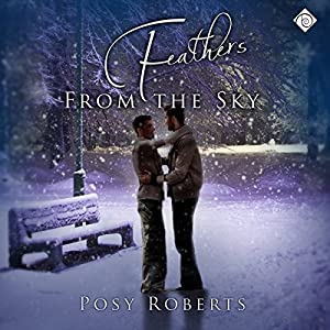 Feathers from the Sky Audiobook
