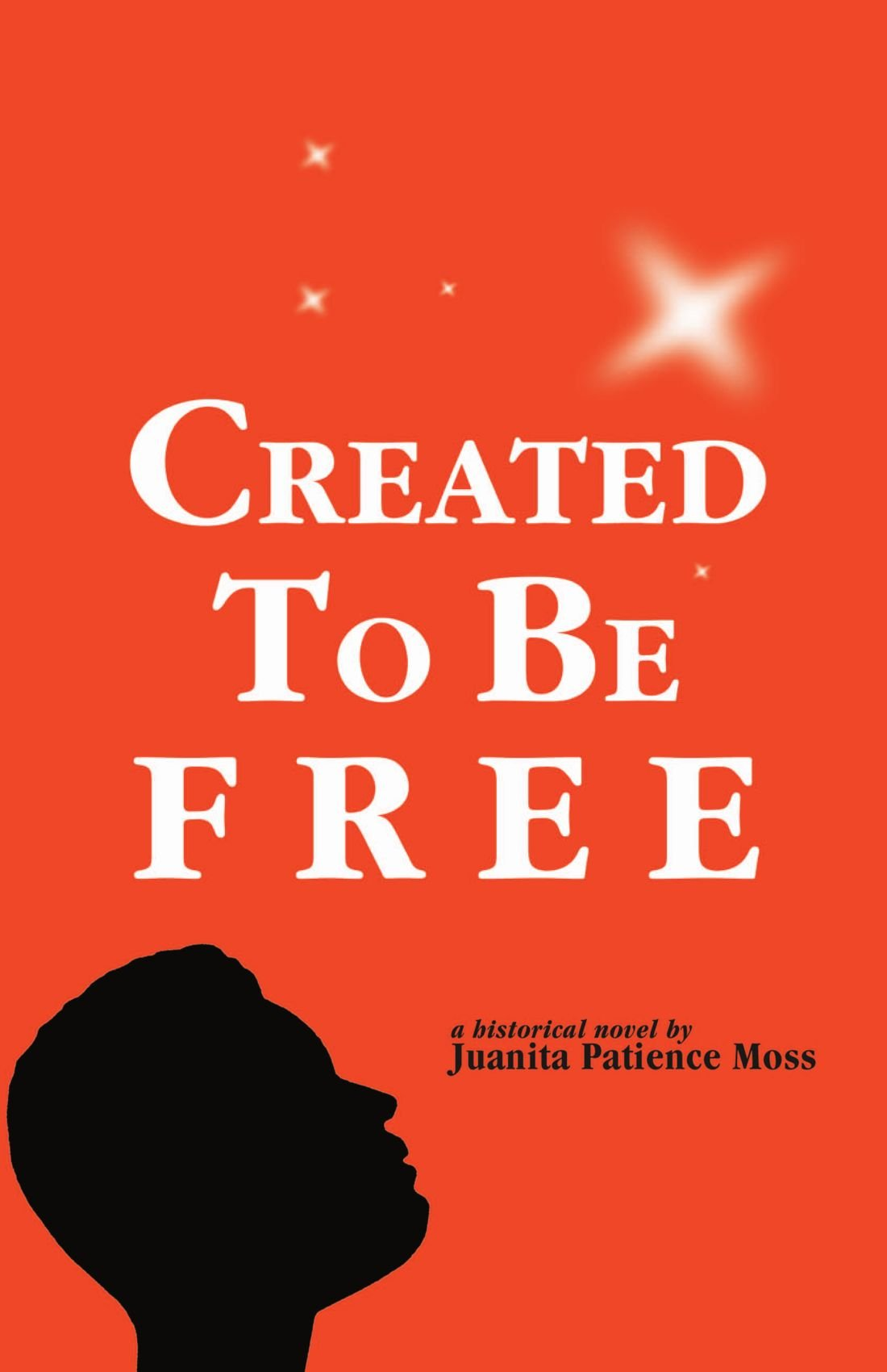 Read Online Created To Be Free: A Historical Novel about One American Family pdf epub