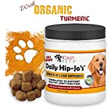 Image of Advanced Hip and Joint Supplement for Dogs- Daily Hip-Jo's by iDash Pets- Best Glucosamine for Dogs, Chondroitin, Turmeric, MSM for Dogs- Hip Dysplasia, Dog Arthritis Pain Relief - 130 Soft Chews