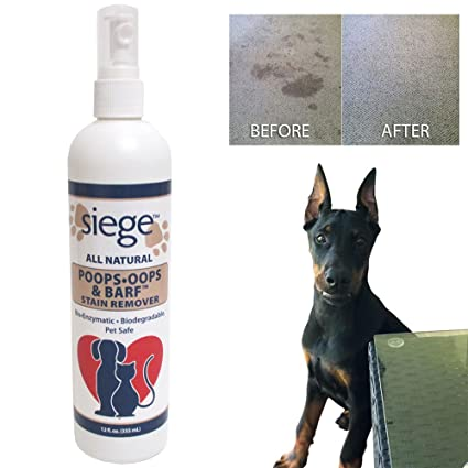 Amazon Com Siege Pet Stain Odor Remover Spot Cleaner Dog
